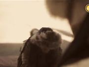 Бүгін 12:30-да «Мәңгілік аспан астында» деректі фильмінің 9-бөлімін көріңіз!