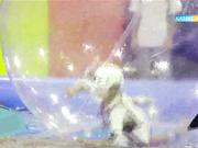 Епті де батыл балаларға арналған «Шытырман» бағдарламасын бейсенбі-жұма күндері 18:15-те көріңіз!