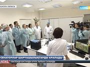 Сенат депутаттары Ақмола облысындағы шаруашылықтарды аралады