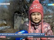Алматыда 4 жасар балаға пневматикалық қарудан оқ атылды
