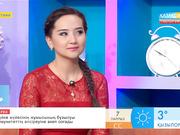 Әнші Салтанат Бақаева: Биыл жеке әнші ретінде шығармашылығымды дамытпақпын