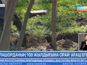 Алашорданың 100 жылдығына орай ағаш егілді