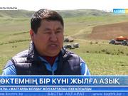 Алматы облысында көктемгі дала жұмыстары қызу қарқын алды