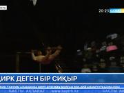 Мәскеудің Ю.Никулин циркі мен Қазақ мемлекеттік циркі бірлік күніне орай мерекелік бағдарлама ұсынды