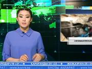 Биыл Жамбыл облысында 15 мыңға жуық азамат жұмыспен қамтылады