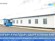 Алматы облысындағы Көлтабан ауылының оқушылары қамыстан салынған мектепте оқып жүр