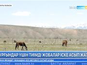 Алматы облысы, Райымбек аудандық прокуратурасының бастамасымен бірнеше жоба іске асты