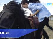 Мәселе - Жетімдер мен тастанды сәбилер (13.05.2017) (Толық нұсқа)