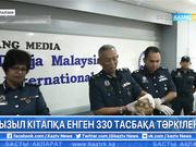 Малайзия астанасында табиғатта өте сирек кездесетін 330 тасбақа тәркіленді