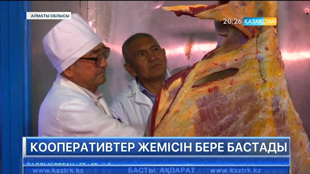 Алматы облысында құрылған кооперативтер өз жемісін бере бастады