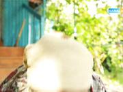БҮГІННЕН  БАСТАП «ҚЫЗЫЛ АЛМА» ТЕЛЕХИКАЯСЫ ЭФИРГЕ ЖОЛ ТАРТАДЫ