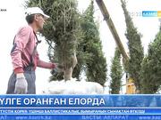 Елордада ЭКСПО қарсаңында жасыл желек пен гүлдер отырғызу басталды