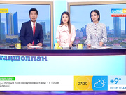 Сүлік салудың пайдасы (ВИДЕО)