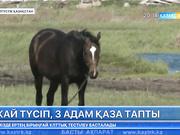 Солтүстік Қазақстан облысында жай отынан 3 адам қаза тапты