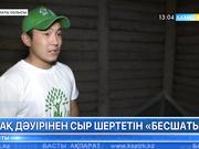 Алматы облысындағы Бесшатыр қорғандары әлі де толық зерттеуді қажет етеді