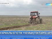 Оңтүстік Қазақстан облысында биыл суармалы егістік 118 мың гектарға артты