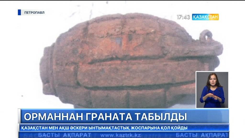 Солтүстік Қазақстан облысында орманнан граната табылды