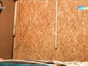 «Мәселе» тілшісі Әлия Әшім бақсы-балгерлерге болашағын «болжатты»