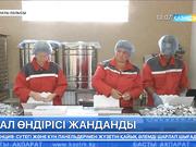 Алматы облысында бал өндірісі жанданып келеді