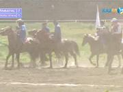 Көкпар. Маңғыстау - Алматы облысы