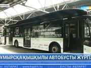Голландиялық студенттер автобусты құмырсқа қышқылымен жүргізді