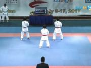 Каратэ-до. Чемпионат Азии. Мужчины, женщины. Финал