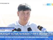 ОҚО шаруалары астық өнімін Өзбекстанға экспорттамақ