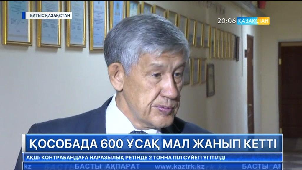 Батыс Қазақстан облысының үш ауданында өрттің өршуіне байланысты төтенше жағдай жарияланды