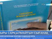 Сығанақтағы қазба жұмыстарын тоқтатпау керек - Сәйден Жолдасбаев