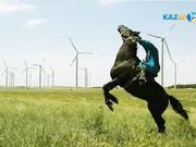 КӨКПАР. І Әлем чемпионаты. РЕСЕЙ - ВЕНГРИЯ (21.08. 2017)