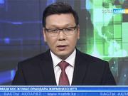 Алматы облысында ұшақ құлап, бір адам қаза тапты