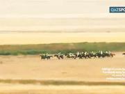 3 қыркүйек күні «ЭКСПО-2017» көрмесі аясында Аламан бәйге өтеді