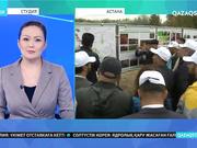 Астананың жасыл белдеуіне 500 түп қарағай отырғызылды