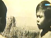 Бүгін 15:00-де «Алты жасар Алпамыс» балалар фильмін көріңіз!