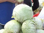 9 қараша 18:40-та «Агробизнес» бағдарламасы Қызылорда облысының әлеуеттік жағдайы туралы сөз етпек
