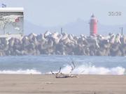 Жапония тұрғындарына цунами қаупі төнді