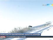 Ақмола облысының прокурорлары браконьерлікпен айналысқан