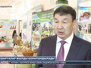 Алматылық шаруалар жылды қорытындылады