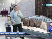 Танымал шебер Қазипа Мұхаметқали Тәуелсіздіктің 25 жылдық мерекесіне тарту ретінде 25 метрлік қызыл кілем ұсынды