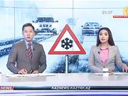 Павлодар облысында 8 автокөлік соғысты