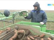 14 желтоқсан 18:40-та «Агробизнес» хабарын көріңіз