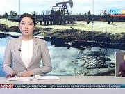Апатты мұнай ұңғымалары экологияға зиян келтіруде