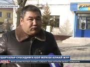 Оңтүстік Қазақстан облысындағы Мақтаарал ауданының шаруалары субсидия қаржысын ала алмай жүр
