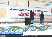 Павлодар қаласында «Ертіс ырысы» атты жаңажылдық жәрмеңке өтті