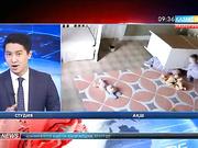 АҚШ-та екі жастағы бала бауырын қауіпті жағдайдан  құтқарып қалды