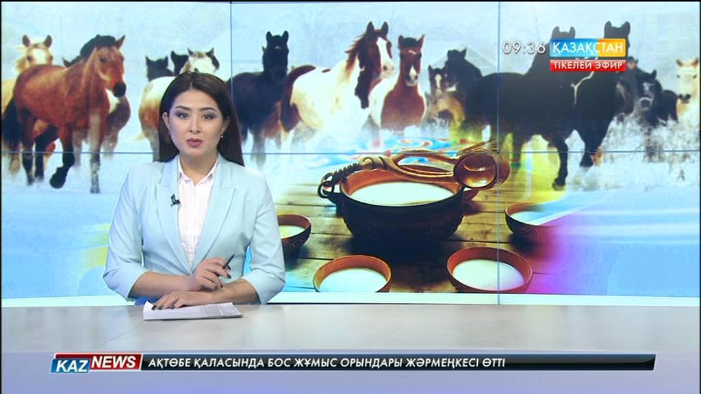 Ақмола облысында қыстың қақаған аязына қарамастан, бие байлап, қымыз дайындап отырған шаруашылық бар