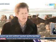 17:30 жаңалықтары (23.01.2017)
