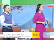 Қобызшы Ақерке Тәжібаева «Таңшолпанда» қонақта