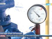 Бензин тапшылығы жойылады
